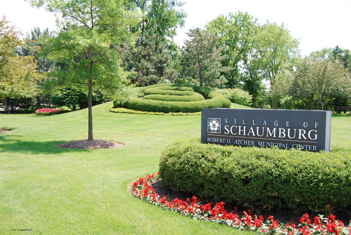 Homes For Sale In Elgin Il
