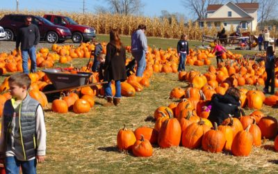 October Family Fun and Fright around Chicago!