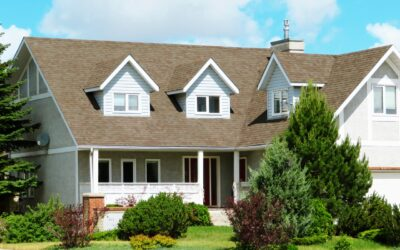Bigger is Better for Chicago Suburban Home Buyers